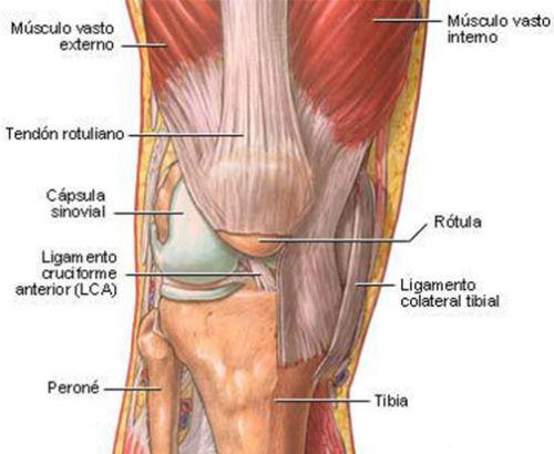 Las lesiones de rodilla y el pie en ciclismo